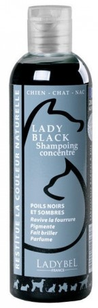 Ladybel Lady Black Shampoo